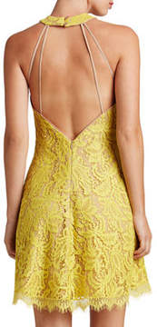 Dress the Population Angie Lace Halter Cocktail Dress