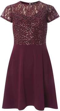 Dorothy Perkins Burgundy Sequin Fit and Flare Dress