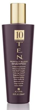 Alterna TEN Perfect Blend Shampoo/8.5 oz.