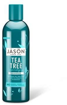 Jason Normalizing Tea Tree Treatment Shampoo 17.5 oz