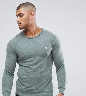 Le Breve Tall Sweatshirt