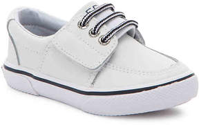 Sperry Boys Ollie Jr. Toddler Sneaker