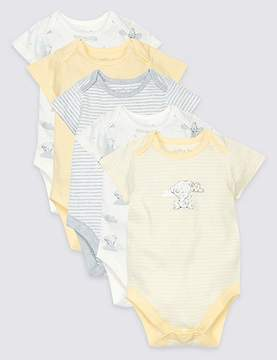 Marks and Spencer 5 Pack Pure Cotton Printed Bodysuits