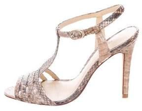 Alexandre Birman Python T-Strap Sandals
