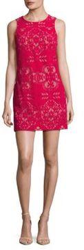 Cynthia Steffe Roundneck Textured Dress