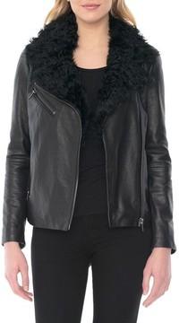 Badgley Mischka Women's Marianne Genuine Shearling Collar Moto Jacket