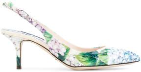 Dolce & Gabbana Bellucci hydrangea print pumps