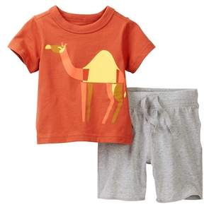 Tea Collection Hump Day Outfit (Baby Boys)