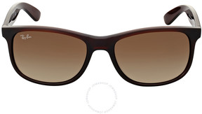 Ray-Ban Andy Brown Gradient Sunglasses