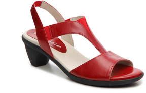 David Tate Women's Action Sandal