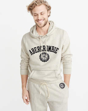 Abercrombie & Fitch Applique Logo Graphic Hoodie