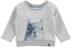 Molo Doc Squirrel Sweatshirt, Gray, Size 12-24 Months