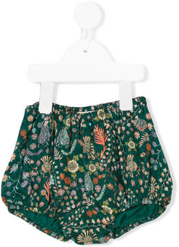 Caramel Star baby bloomers