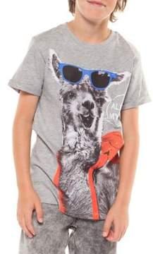 Dex Boy's Alpaca Cotton Tee