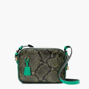 Signet bag in snakeskin-printed colorblock Italian leather
