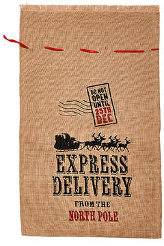 Express 20'' X 30'' 'Express Delivery' Christmas Bag - Set of Two