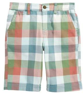 Tea Collection Check Canvas Shorts
