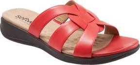 SoftWalk Thompson Slide Sandal (Women's)