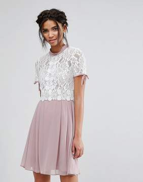 Elise Ryan Skater Dress With Corded Lace Upper