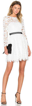 Cynthia Rowley Wild Flower Fit & Flare Dress