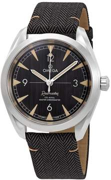 Omega Seamaster Railmaster Automatic Men's Watch