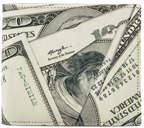 Maison Margiela Wallet in Dollar Print