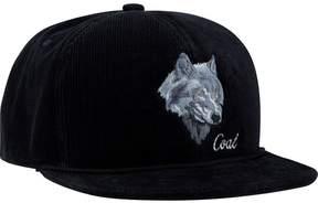 Coal Wilderness Snapback Hat