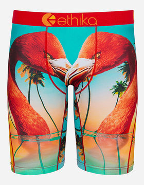 Ethika Flamingo Island Staple Boys Underwear