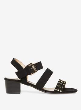 Dorothy Perkins Black 'Samantha' Studded Sandals