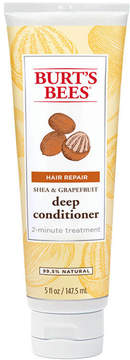 Shea & Grapefruit Conditioner by Burt's Bees (5oz Conditioner)