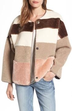 Eliza J Women's Faux Shearling & Faux Fur Colorblock Jacket
