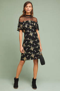 Donna Morgan Illusion Embroidered Lace Shift Dress