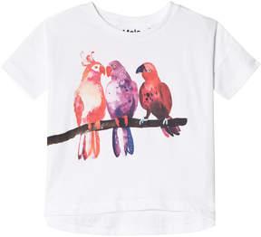 Molo White Raeesa Short Sleeve T-Shirt