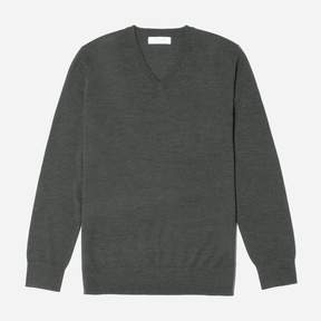 Everlane The Luxe Merino V-Neck