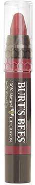 Lip Crayon - Redwood Forest by Burt's Bees (.11oz Lip Color)