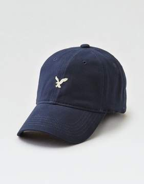 American Eagle Outfitters AE Fitted Baseball Hat
