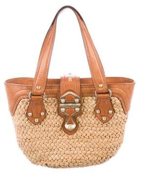 MICHAEL Michael Kors Raffia Handle Bag
