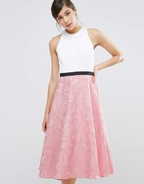 Coast Bianca Collared Dress
