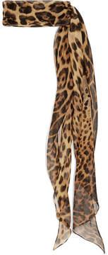 Saint Laurent Leopard-print Silk-chiffon Scarf - Brown