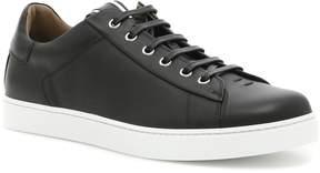 Gianvito Rossi David Sneakers