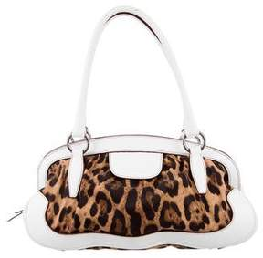 Dolce & Gabbana Leather-Trimmed Animalier Bag - BROWN - STYLE