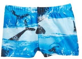 Molo Infant Boy's Nansen Swim Shorts