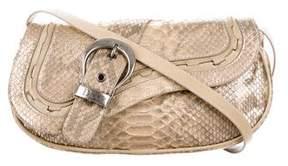 Christian Dior Metallic Python Gaucho Bag