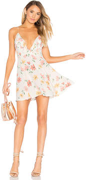 Privacy Please Sigsbee Dress
