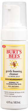 Burt's Bees Skin Nourishment Foaming Cleanser