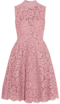 Valentino Cotton-blend Corded Lace Dress - Pink