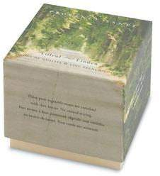 Provence Sante Linden Gift Soap 2 Bar Set by 2.7ozea Bar)