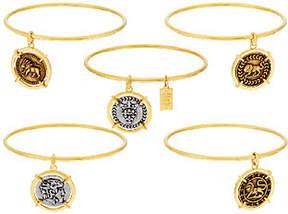 Elizabeth Taylor The Set of 5 Goldtone Coin Charm Bangles