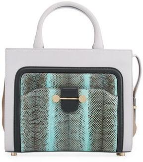 Jason Wu Daphne Watersnake & Leather Crossbody Tote Bag, Glass