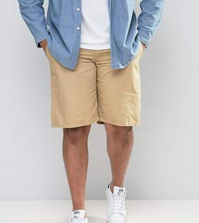 Loyalty And Faith PLUS Chino Shorts